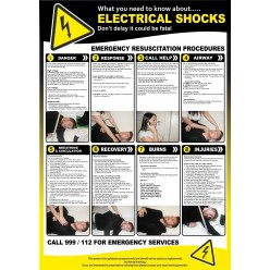 Electric Shocks Poster - 420mm x 595mm