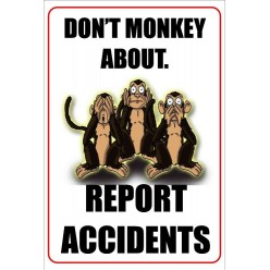 Don't Monkey About Report Accidents