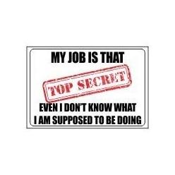 Top Secret Job